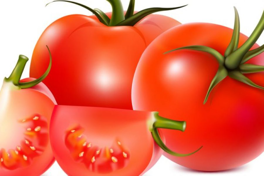 Daily tomato consumption may protect against skin cancer
